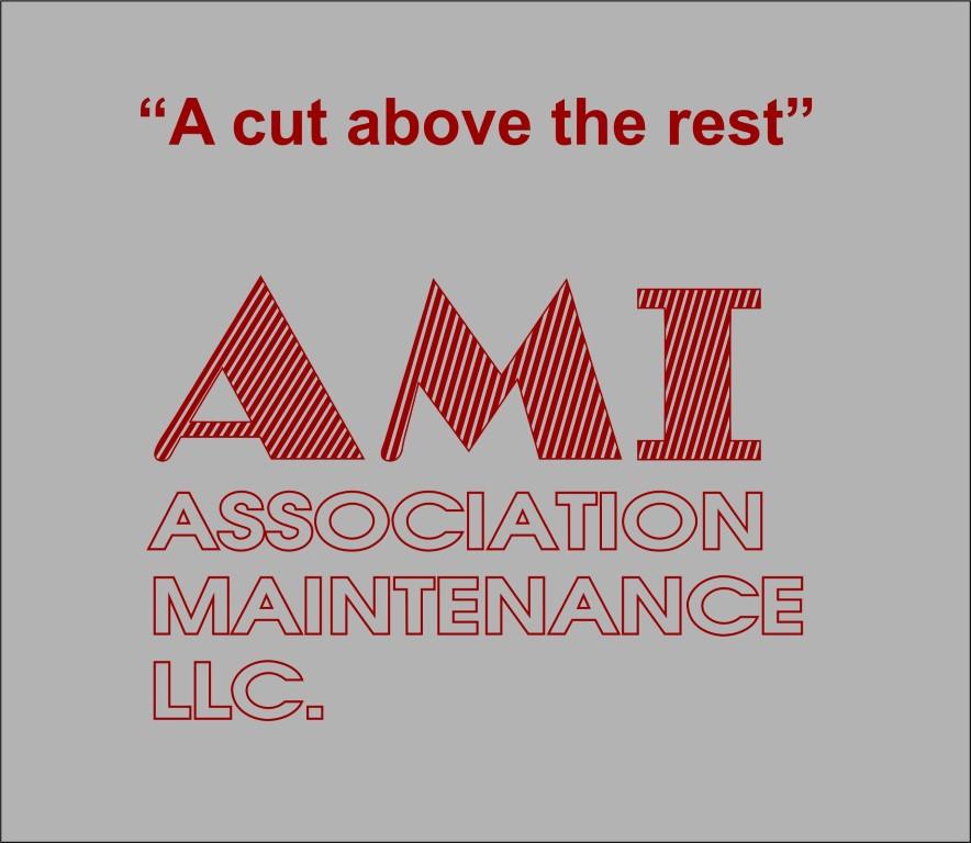 ami (Medium)